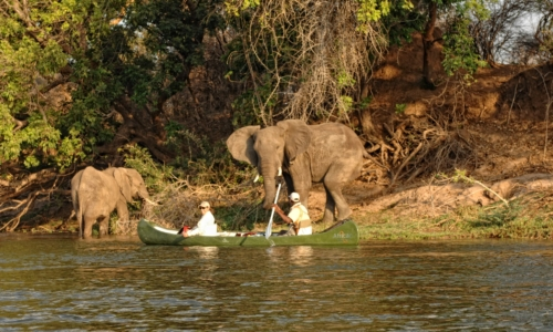 Zambezi Expeditions Camp