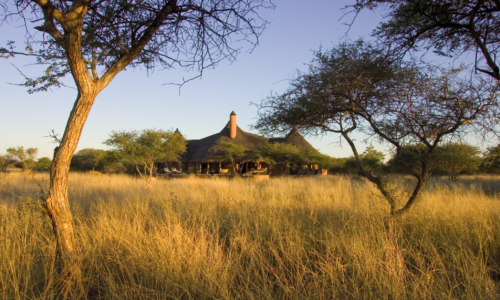 Okonjima Bush Suite