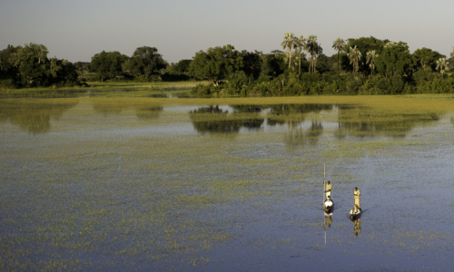 The Trans-Okavango